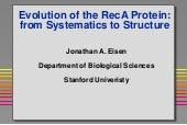 Evolution of the RecA Protein: from...