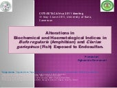 Alterations in  Biochemical and Hae...