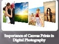 Importance of Canvas Prints in Digital Photography