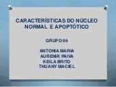 Características do núcleo normal  e...