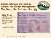 Carbon Storage And Carbon Credits F...