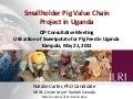Smallholder pig value chain project in Uganda