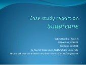 Case study report on sugarcane