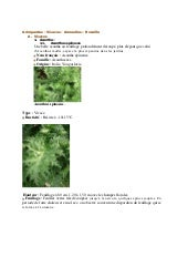 Catalogue plantes sol_alcalin_mur_v...