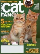 Selecting a Cat Sitter-Cat fancy Ja...