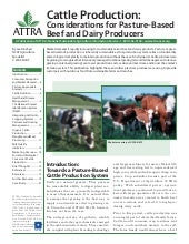 Cattle Production: Considerations f...