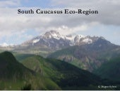 South Caucasus Eco-Region