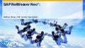SAP NetWeaver Neo*: Community-Driven Development