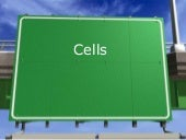 Cell organelle power point