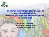 In situ/On farm Conservation and Use of Agricultural Biodiversity (Horticultural Crops and Wild Fruit Species)  in Central Asia