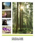 Central park info package