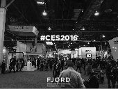 Fjord at CES 2016