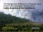Fire Management in Latin America & ...