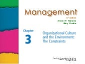 Ch 3  org culture and the environme...