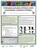 Participatory evaluation of chicken health and production constraints in Ethiopia