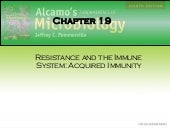 Chap19b Acquired Immune Response