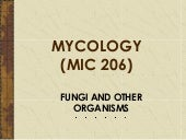 Chap 5 fungi and other organism (mu...