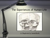 The Experiences of Human Life