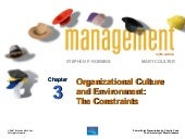 Chapter 3 management (9 th edition)...