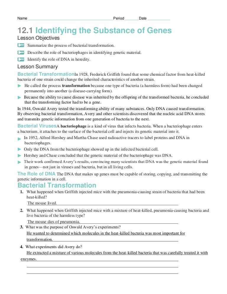 Worksheets Dna The Molecule Of Heredity Worksheet Key chapter12 packet