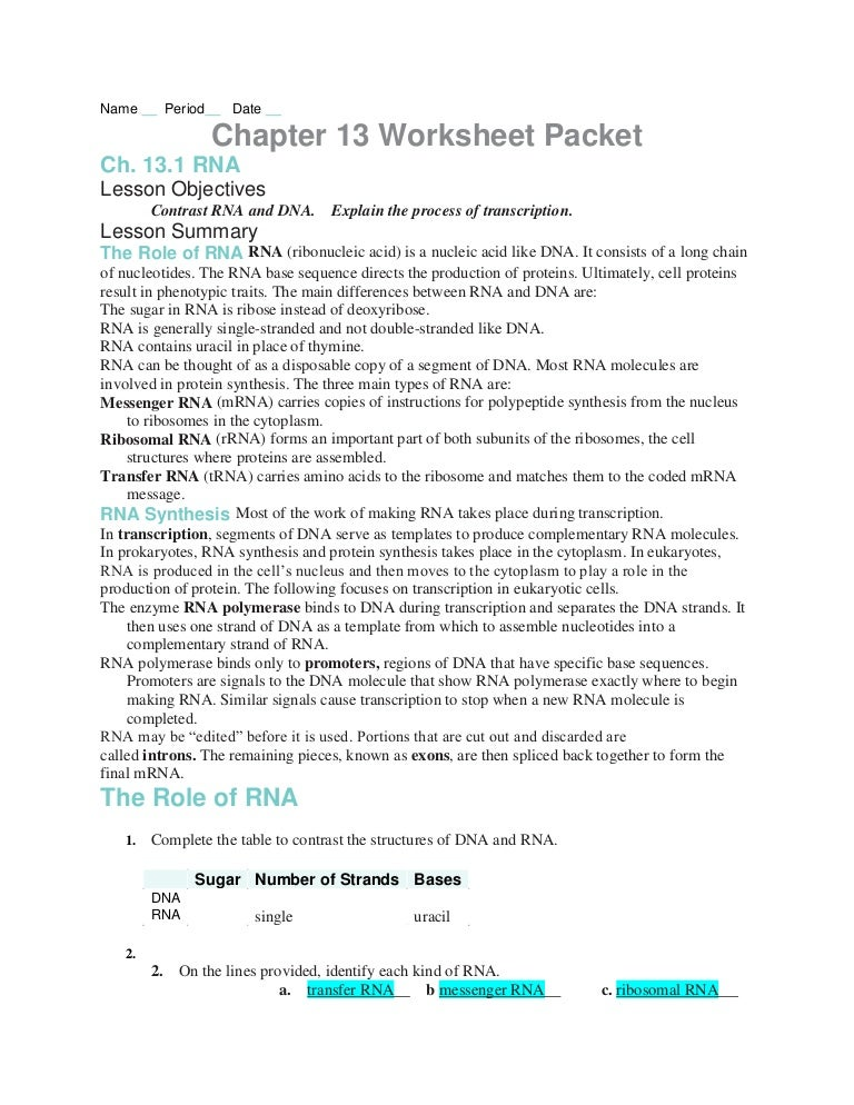 Worksheets Dna And Rna Worksheet Answers chapter13 worksheets