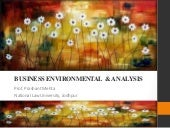Business Environment and Analysis