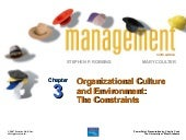 Chapter 3 Organiz Culture And Envir...