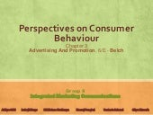 Perspectives on Consumer