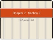 Chapter 7 section 2 (nature of soil)