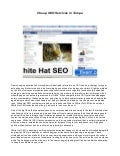 Cheap SEO services in Tampa, Florida