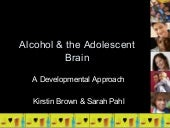 Alcohol and Adolescent Development