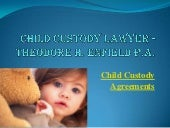 Child custody lawyer - Theodore H. ...