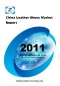 China leather shoes market report   sample pages