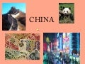 Chinese New Year Customs and Traditions ppt.