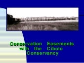 Cibolo Conservancy Easements