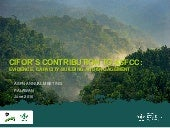 CIFOR's contribution to ASFCC: evidence, capacity building and engagement