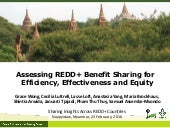 Assessing REDD+ Benefit Sharing for Efficiency, Effectiveness and Equity