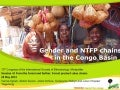 Gender and NTFP chains in the Congo Basin