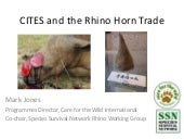 Cites and the rhino horn trade