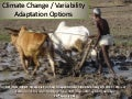 Climate change or variability adaptation options
