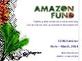 Climate finance marchesini (bndes)amazon fund fightingdeforestation&promotingconservation-ccxg gf march2014