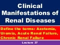 Clinical manifestations of renal diseases st