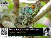 Can one chameleon make a difference?