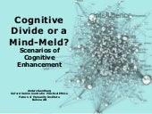 Cognitive Divide or a Mind-Meld