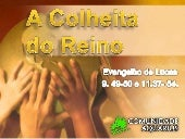 Colheita do reino