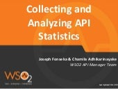 Collecting and Analyzing API Statistics