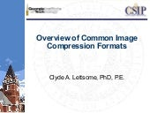 Common image compression formats