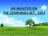 Analysis on the Companies Act, 2013