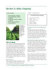 Alley Cropping in Agro Forestry - U...