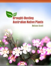 Drought Busting Australian Native P...